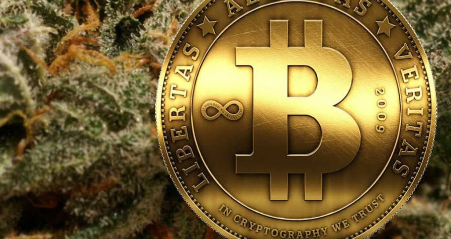 Should You Leave Crypto, Get into Cannabis and 'Buy high'? 3
