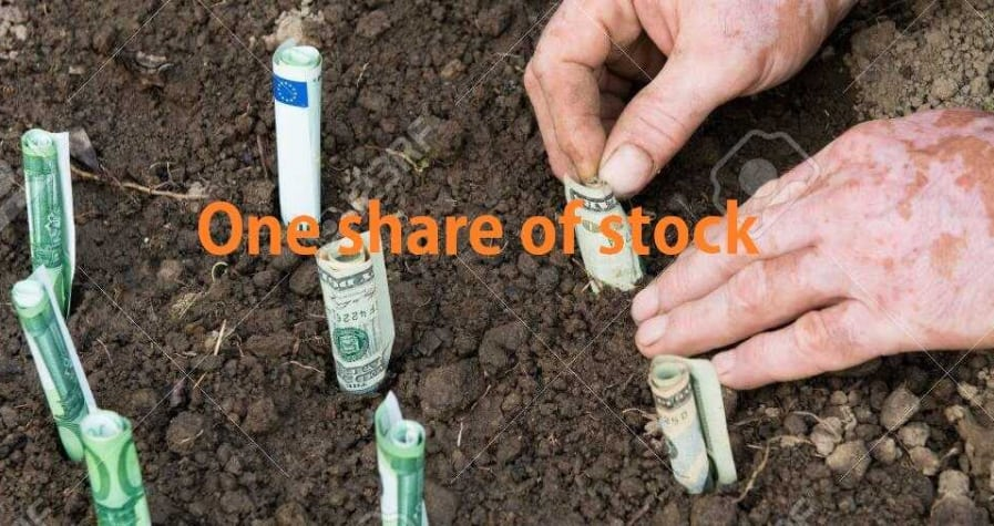 One share of stock - is it worth buying 3