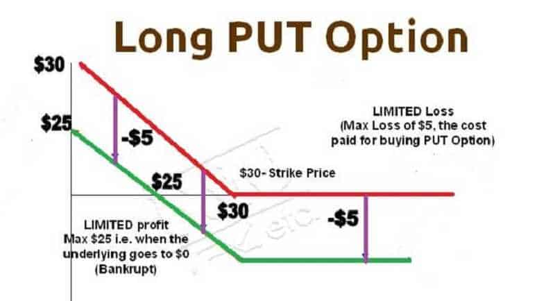 TRADING OPTIONS - Understand the World of Options 18