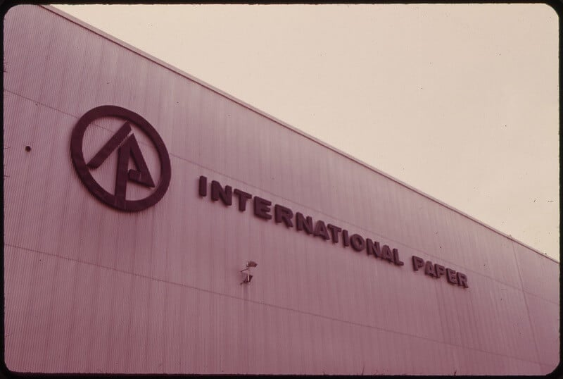 International Paper (IP) Could Be Great Stock In 2020