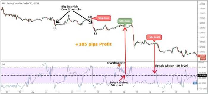 Momentum trading 1