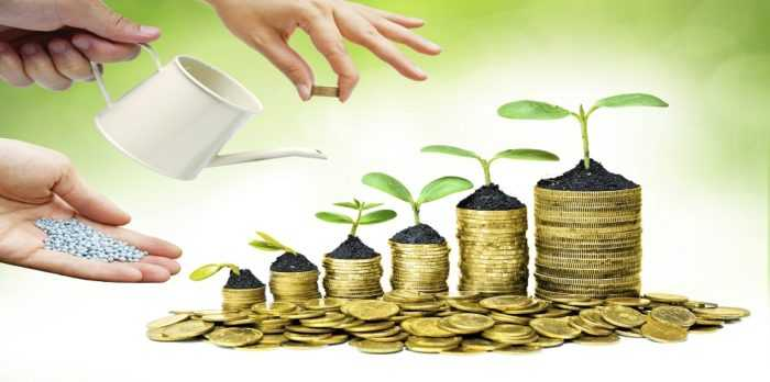 What is Mutual Fund Investment?